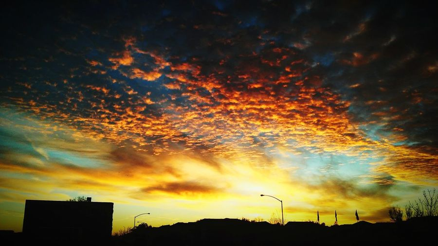 As the morning light burns away the darkness. Dramatic Sky Silhouette No People Low Angle View Outdoors Cloud - Sky Sky Night Tree Nature Beauty In Nature City Life California Sunrise