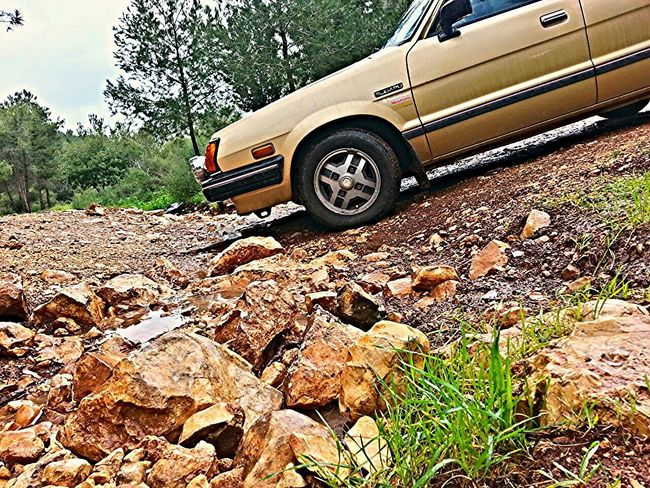Taking Photos Subaru HDR Nature . Loving wet nature ... Mein Automoment