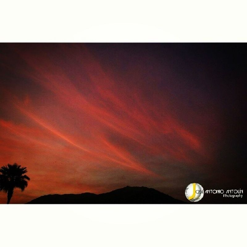 Atardeceres andaluces. Nature Life Sunset Blue beautiful food hair love clouds art instahub friends onedirection photo summer joseantonioantolin instagood throwbackthursday swag nature_obsession_landscapes beauty best2gram sunset_madness sunrise randombranchiness magic funny pointofview pretty night