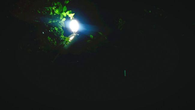 Nightphotography Littlelight