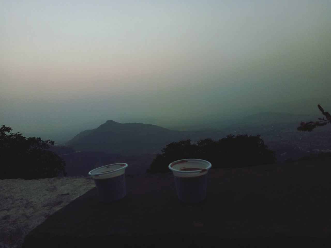 Tree Mountain Refreshment No People Fog Water Outdoors Nature Sky Drink Day Freshness Low Angle View Sunset Tree Travel Destinations Togetherness One Person People Adults Only Bonding Close-up Beauty In Nature