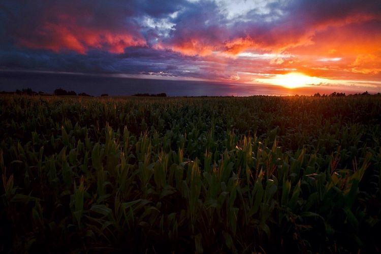 Sunset #sun #clouds #skylovers #sky #nature #beautifulinnature #naturalbeauty #photography #landscape Sunset at Azores shoot with Canon Holiday Traveling
