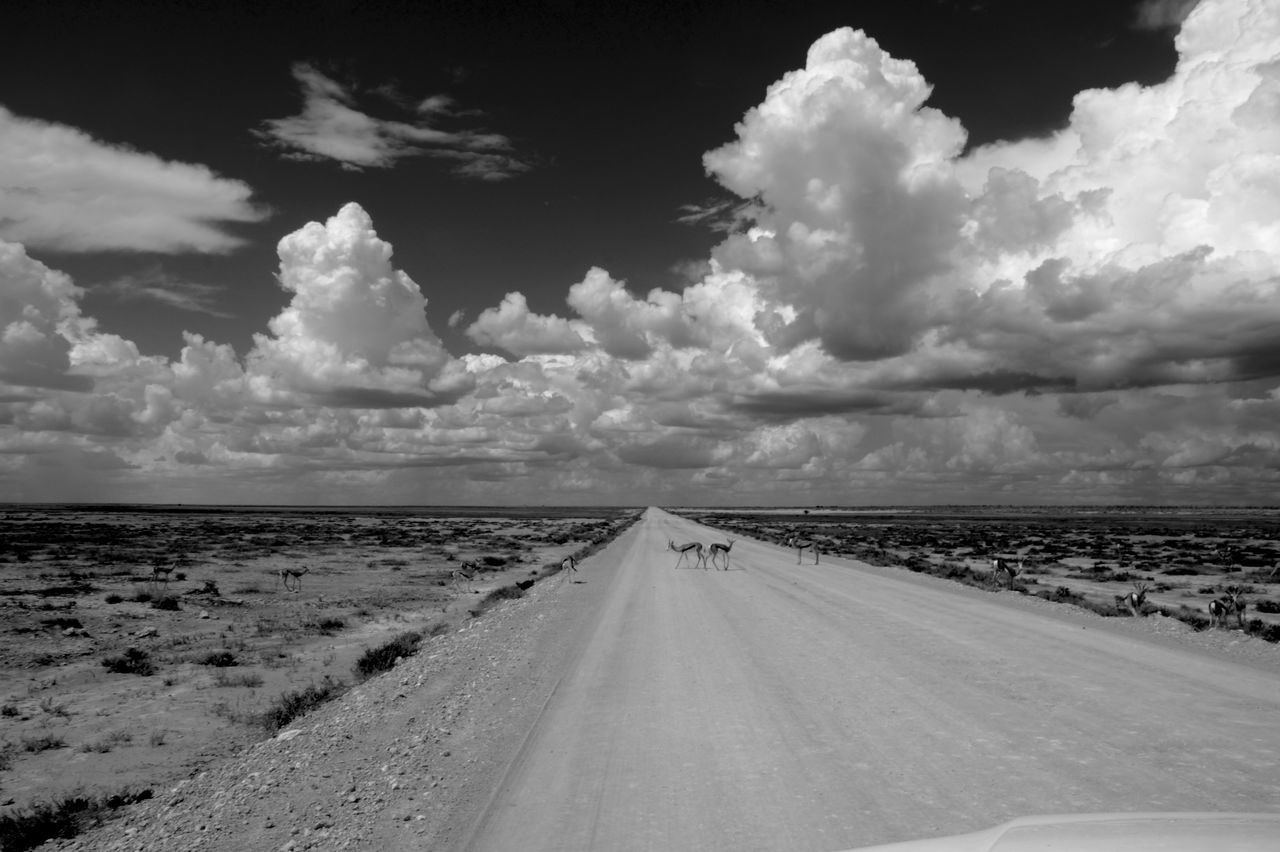 road, the way forward, sky, cloud - sky, diminishing perspective, transportation, scenics, landscape, nature, day, no people, tranquil scene, outdoors, tranquility, beauty in nature, water