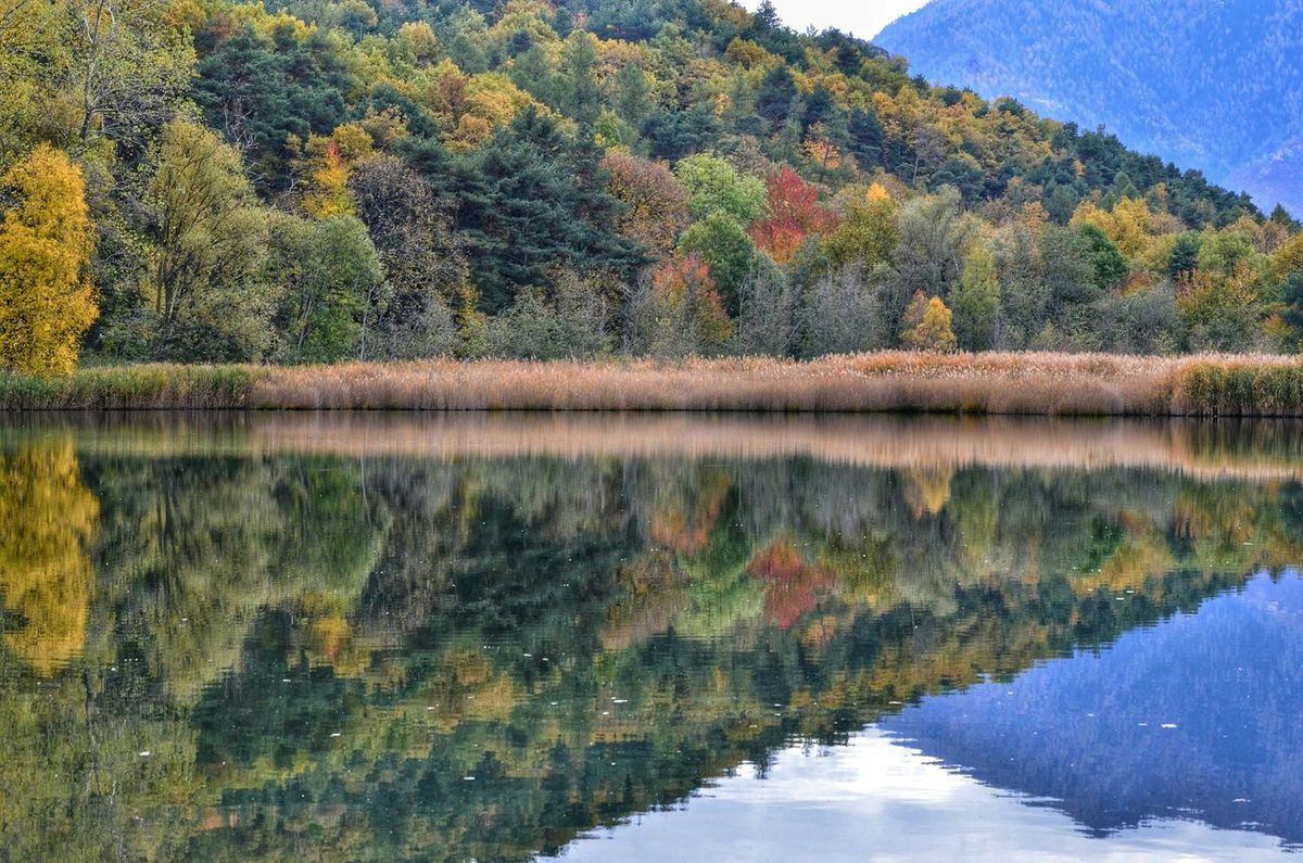 Peace And Quiet Hello World EyeEm Nature Lover Beautiful Nature EyeEmBestPics Natural Beauty EyeEm Best Shots - Nature Landscape_photography Landscape_Collection Nature_perfection EyeEm Gallery Taking Photos Lake Lake View Aostavalley Mountains Autumn Colors Autumn Collection Autumn Valle D'aosta
