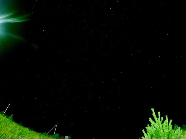 Night Green Color Nature Field No People Beauty In Nature Growth Star - Space Outdoors Astronomy Sky Space Galaxy Gopro Christmas Tree Nightlapse Panorama Stars Timelapse
