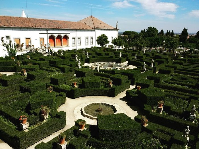 Castelo Branco Jardim Garden Architecture Building Exterior Green Color Sky Plant Day Tranquility Formal Garden Built Structure Green Outdoors Growth Landscaped Stone Material Ornamental Garden Nature Tranquil Scene Taking Photos Green Nature Plants Natural Beauty