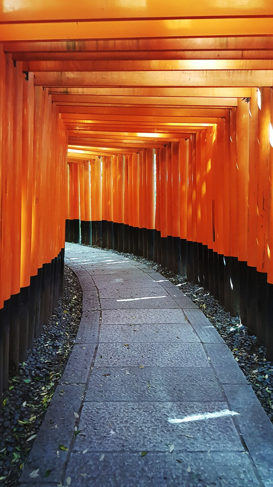 Architecture Outdoors No People Japan Japanese Temple Fushimi Inari ShrineFull Frame Kyoto Red Red Gate Torii Gate TORII Road Travel Travel Destinations Travel Photography Holiday