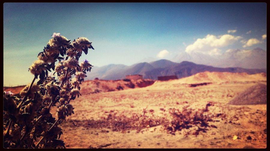 Arequipa Misti Perú First Eyeem Photo