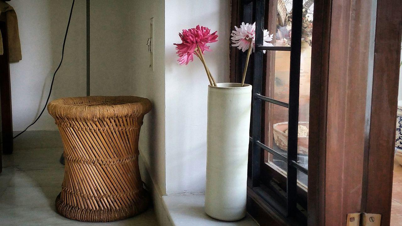 flower, vase, indoors, no people, day, freshness