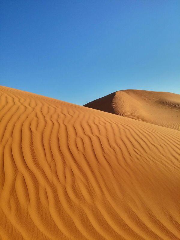 Deserts Around The World Lost In The Landscape
