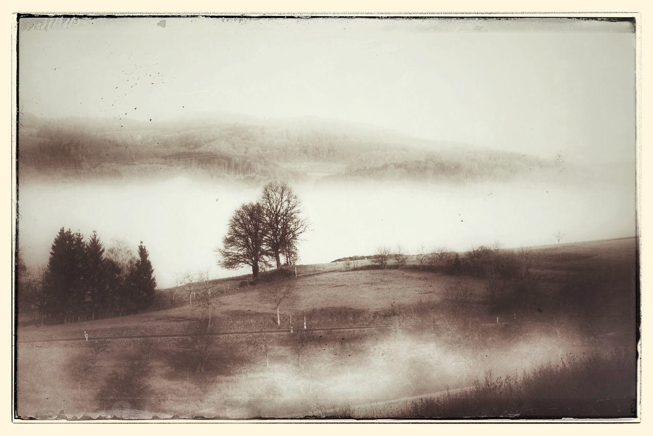 Nebel Landscape FilterMadness  Monochrome Blackandwhite