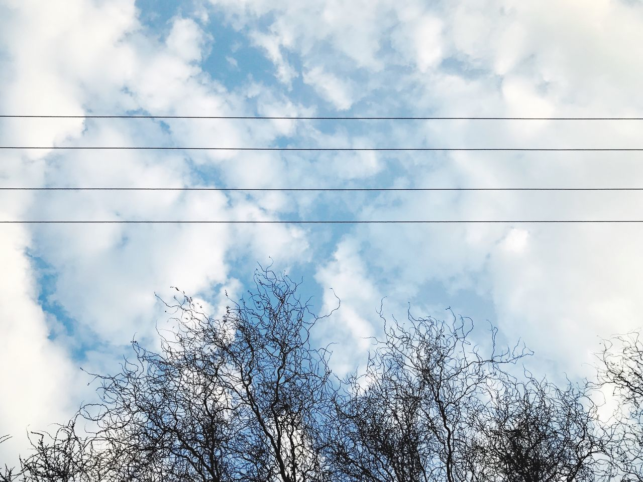 cloud - sky, low angle view, sky, day, nature, no people, beauty in nature, tree, outdoors, tranquility, bare tree, branch