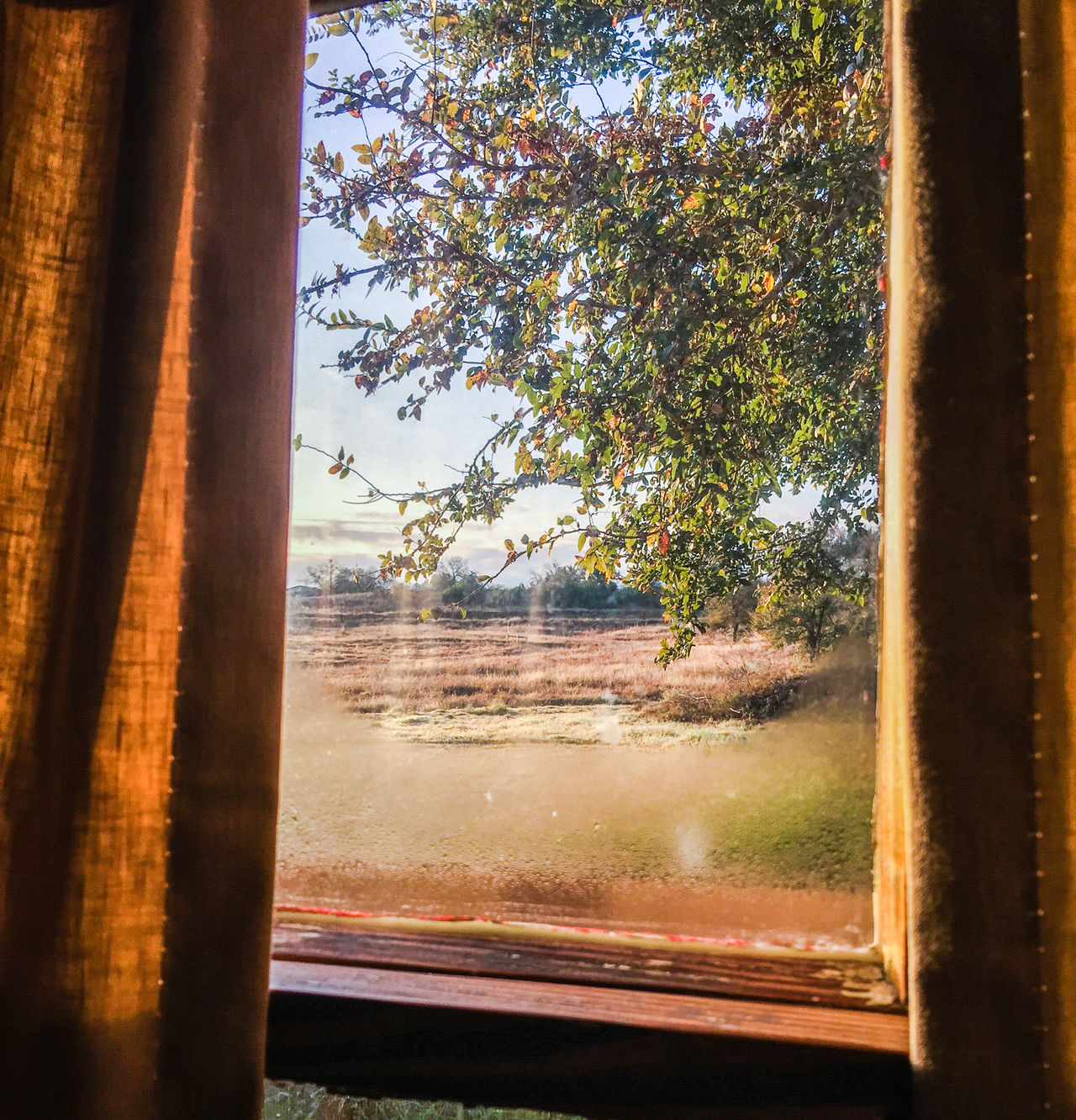 Cabin Country Country Life German Good Morning Good Morning Sunshine Hill Country Hipster Mornin Morning Morning Light Morning Rituals Morning Sun Rural Rural America Rural Life Rustic Scenics Sunrise Texas Texas Hill Country Texas Landscape Travel Tree Window