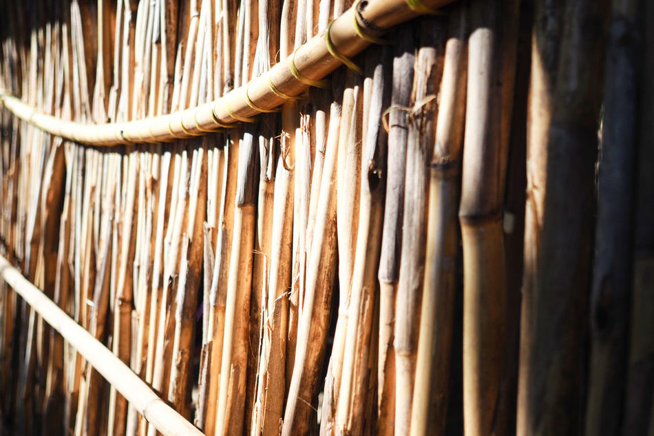 Bam boo! Atitlan Lake Bamboo Bamboo - Plant Bamboo Fence Bamboo Grove Close-up Day Fence Hanging Lines And Shapes Lines, Shapes And Curves Natural Materials No People Outdoors Travel Photography