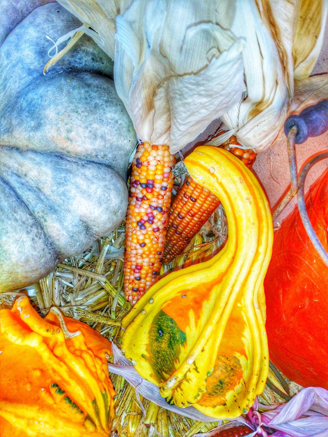 holiday setting of picked gourds on a hay bail Close-up No People Day Outdoors plants Plants Gourds Holiday Season Setting Hay Bail Holiday Setting Outdoor Photography