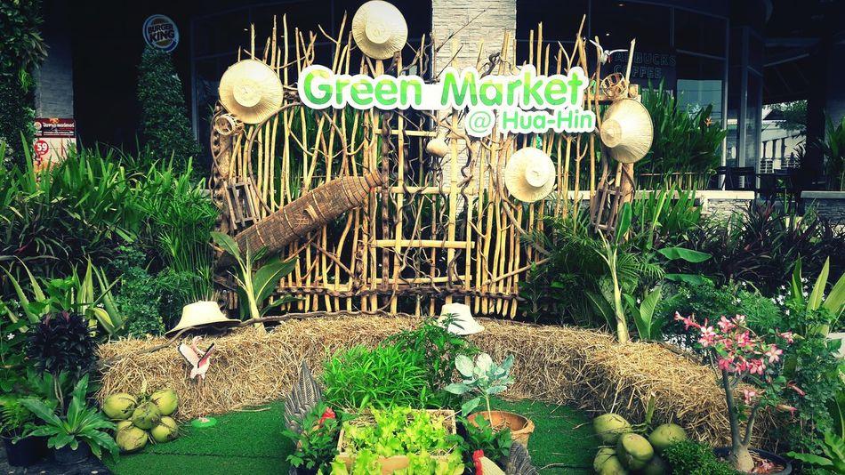 Green market Vegitables Fresh Green Marketplace Hello World Shop Shopping ♡ Food Buyfood