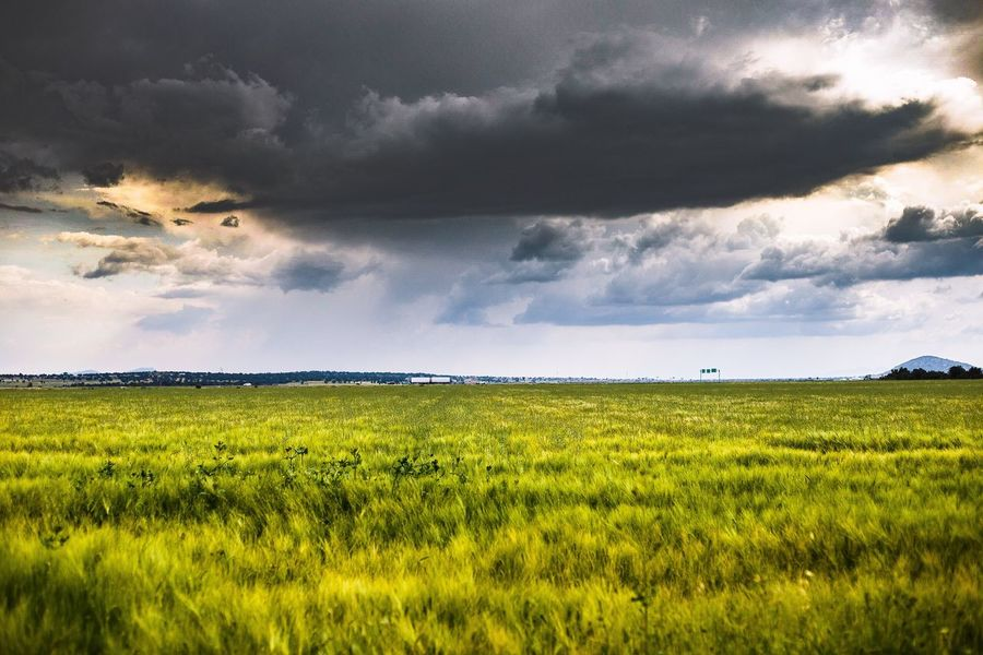 Rainyday en México. Field Landscape Nature Agriculture Tranquil Scene Tranquility Green Color No People Outdoors Rainy Days Rain Cloud Clouds And Sky