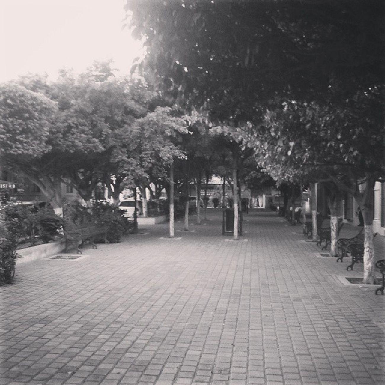 PassingBy Centro Instagram Caminando MuchosHashtags