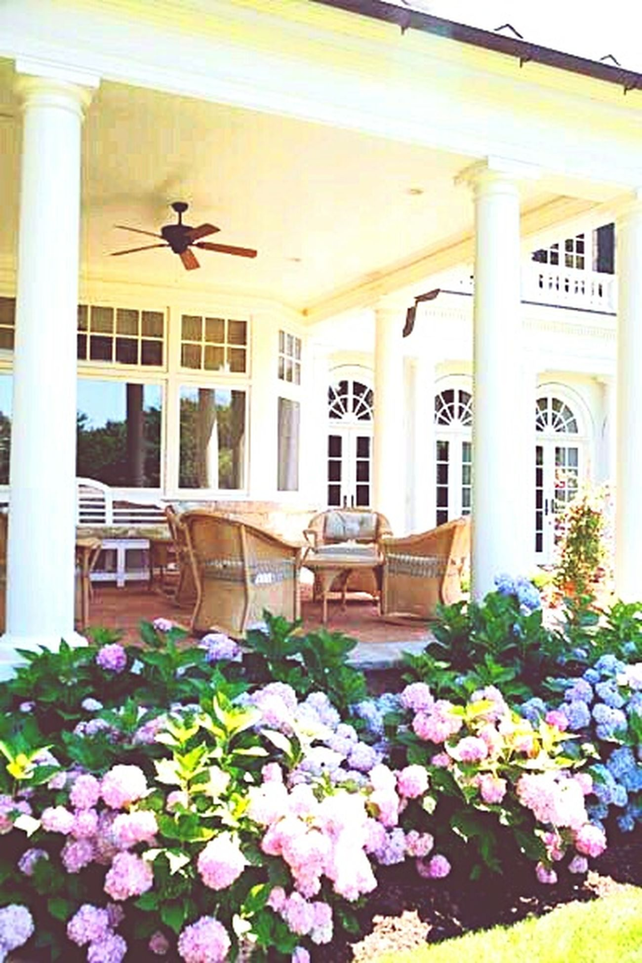 Nature Pink Color Purple No People Vintage Vintage Photo Outdoors Day Flowers,Plants & Garden Flowers Architecture Houses Houses And Windows Beauty In Nature Beautiful Luxurylife Luxury Beautiful House Porch Sitting Porch Porchedesign Porch Railing