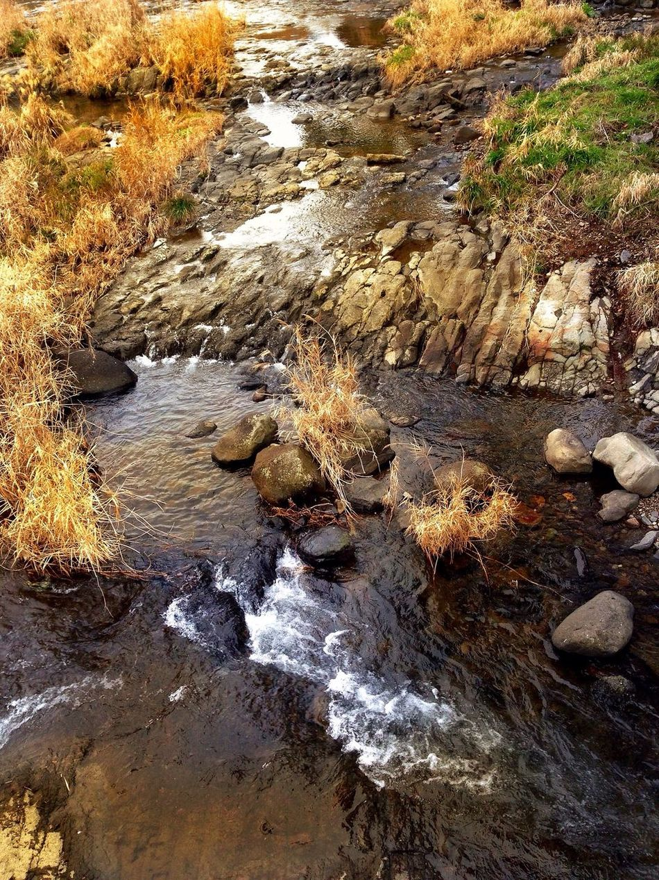 Mywaterfallcollection Wasserfall Creek Creekside Trail Creekside Photography Stream River View Water Nature Tranquility No People Outdoors Beauty In Nature Rock - Object Tranquil Scene Day Motion Close-up (null)KYUSHU Japan Photography