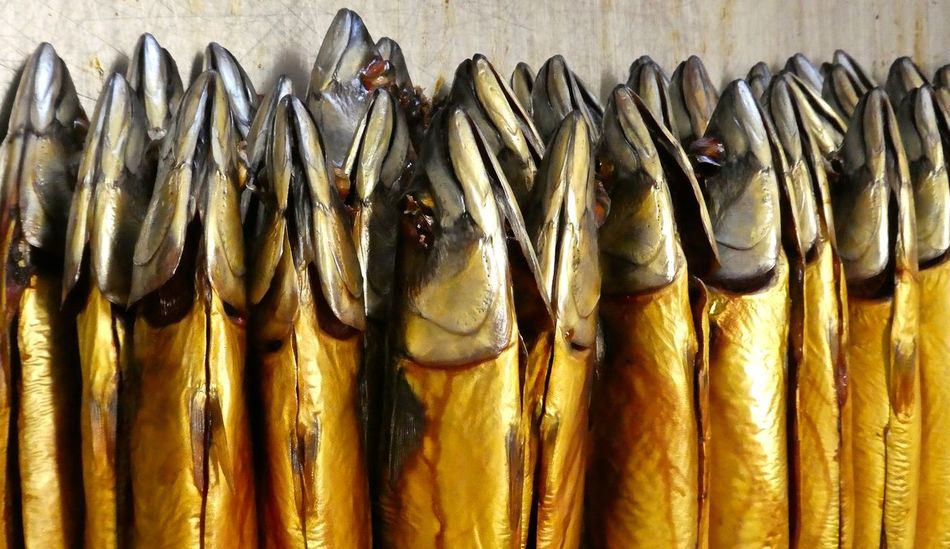 Close-up Day Fisch Fische Fischerei Fish Fishing Freshness Mackerel Mackerels Makrelen No People Räucherfisch Smoked Fish