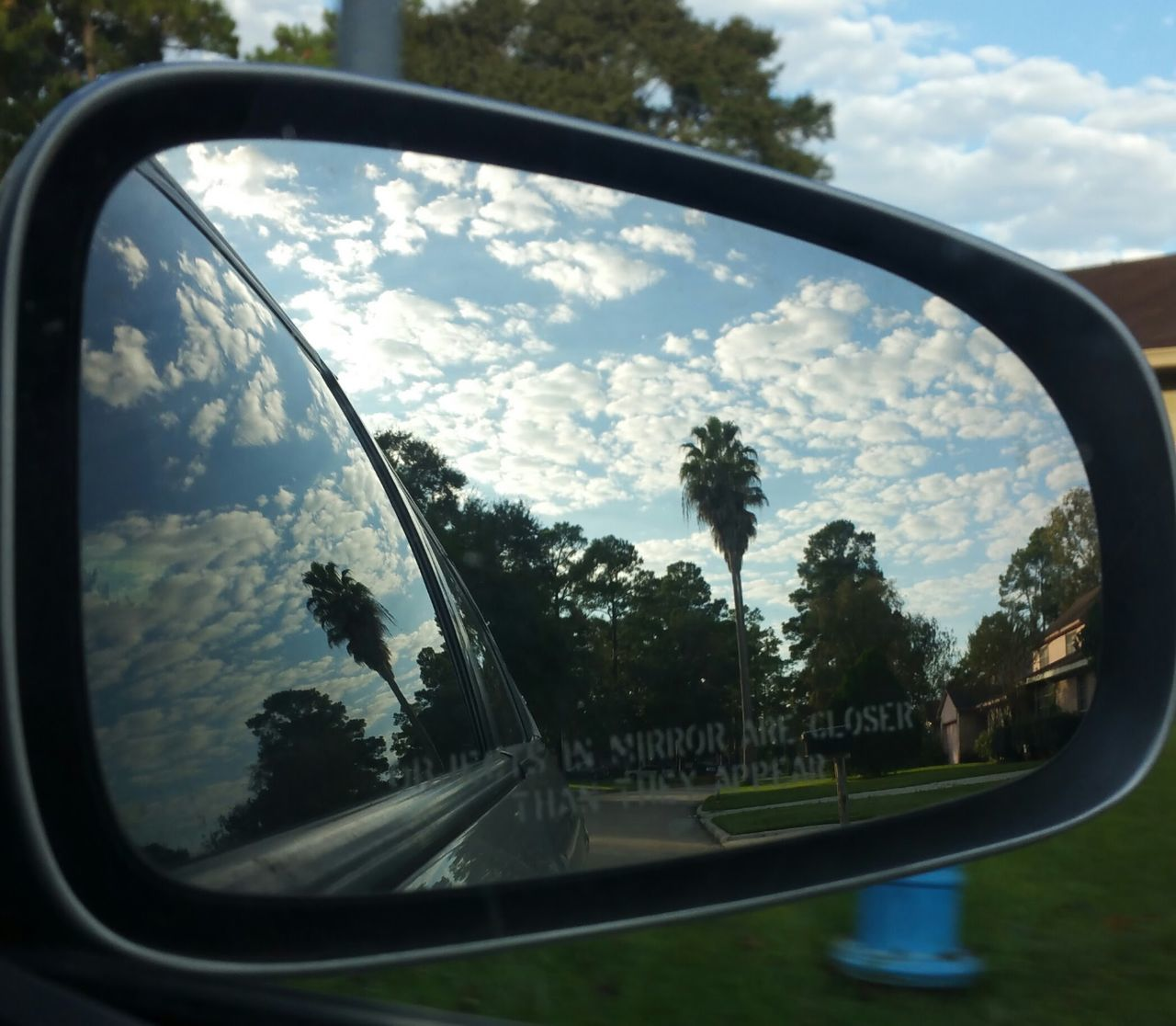 Last one and my favorite. On my street, two houses down. Rear view shot 7 Side-view Mirror Rearviewmirrorshot Glass - Material Reflection Tree Window Cloud Sky Nature Beauty In Nature Dramatic Sky Popular Photos EyeEm Gallery Eyemphotos Nature Photography Tranquil Scene No People Palmtree