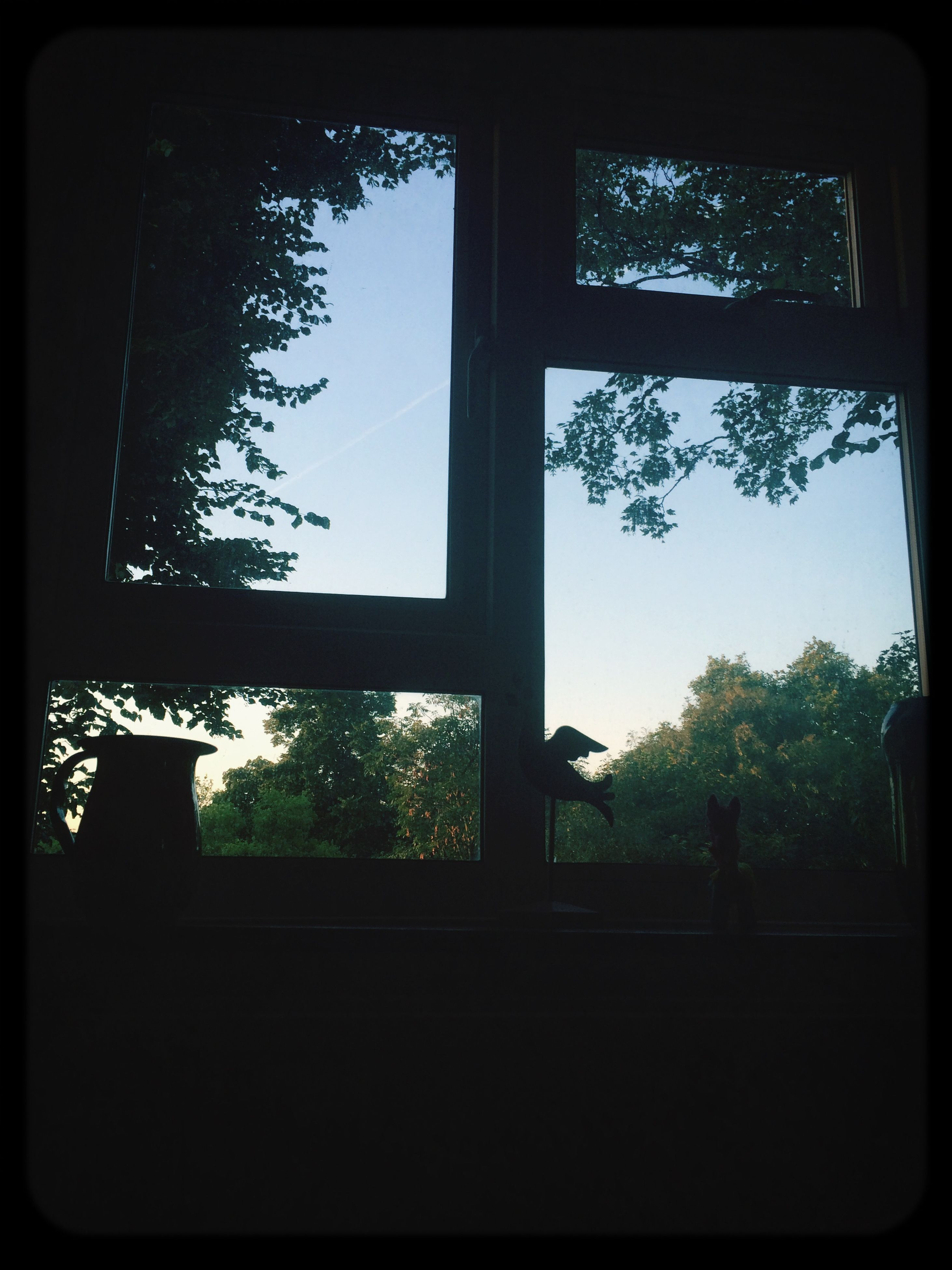 window, transfer print, indoors, tree, glass - material, built structure, transparent, architecture, auto post production filter, silhouette, low angle view, house, sky, day, dark, no people, home interior, building exterior, window frame, growth