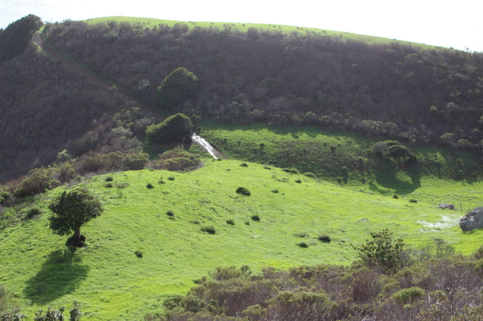 Beauty In Nature Big Sur, Ca. Landscape Nature No People Reading Spot Scenics Tranquil Scene