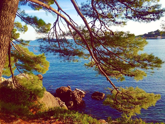 The EyeEm Facebook Cover Challenge The Great Outdoors - 2016 EyeEm Awards Taking Photos Relaxing Trip Nature_collection Nature Photography Croatia Eye4photography  Sea And Sky Clauds And Sky Shot On IPhone Photography Showcase May EyeEm Best Shots Springcolors Springtime Water Reflections Sea View Seascape Eyem Nature Lovers  Outdoor Photography Nature On Your Doorstep Nature_perfection Nature_collection Landscape_collection EyeEmNatureLover