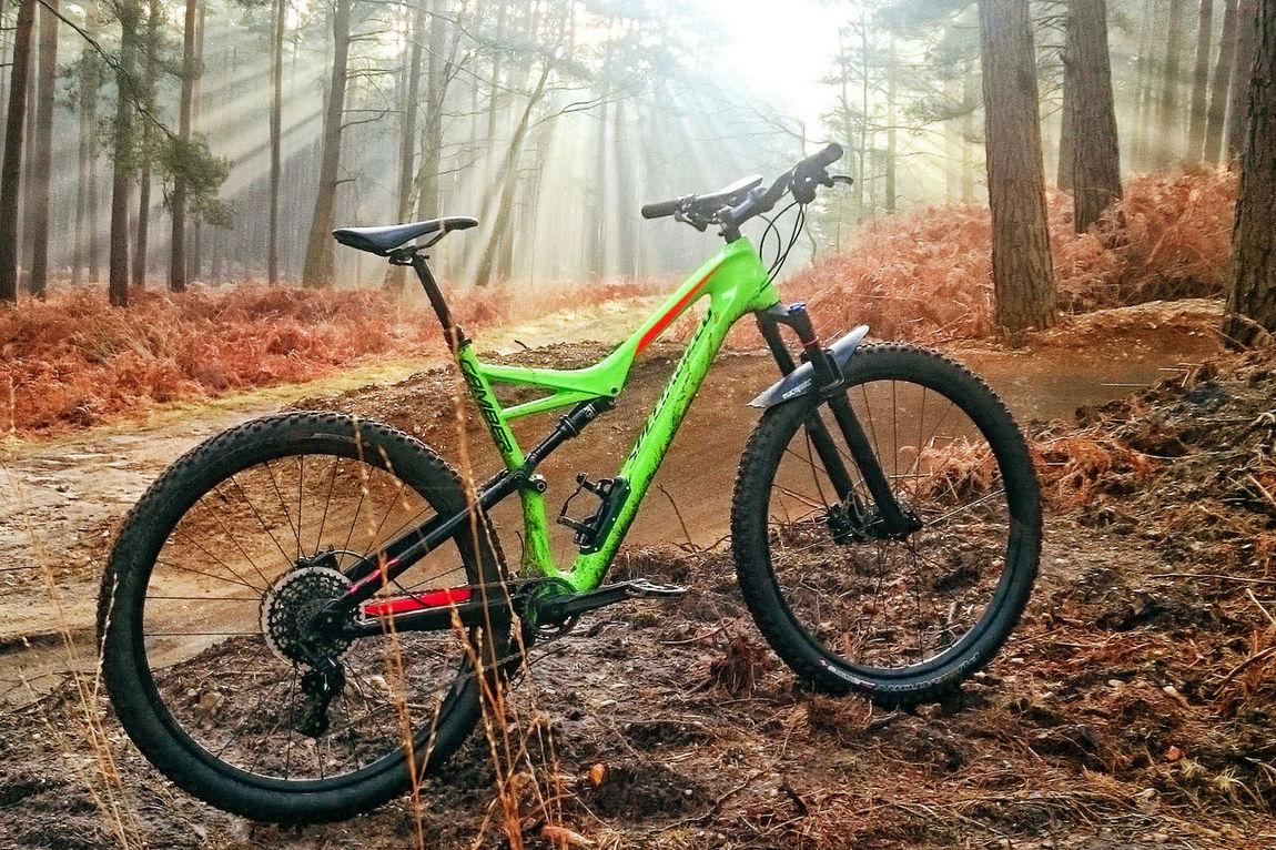 Specialized Mountain Bike at Swinley Forest Bicycle Mountain Bike Mountain Biking Outdoors Specialized Sun Rays Swinley