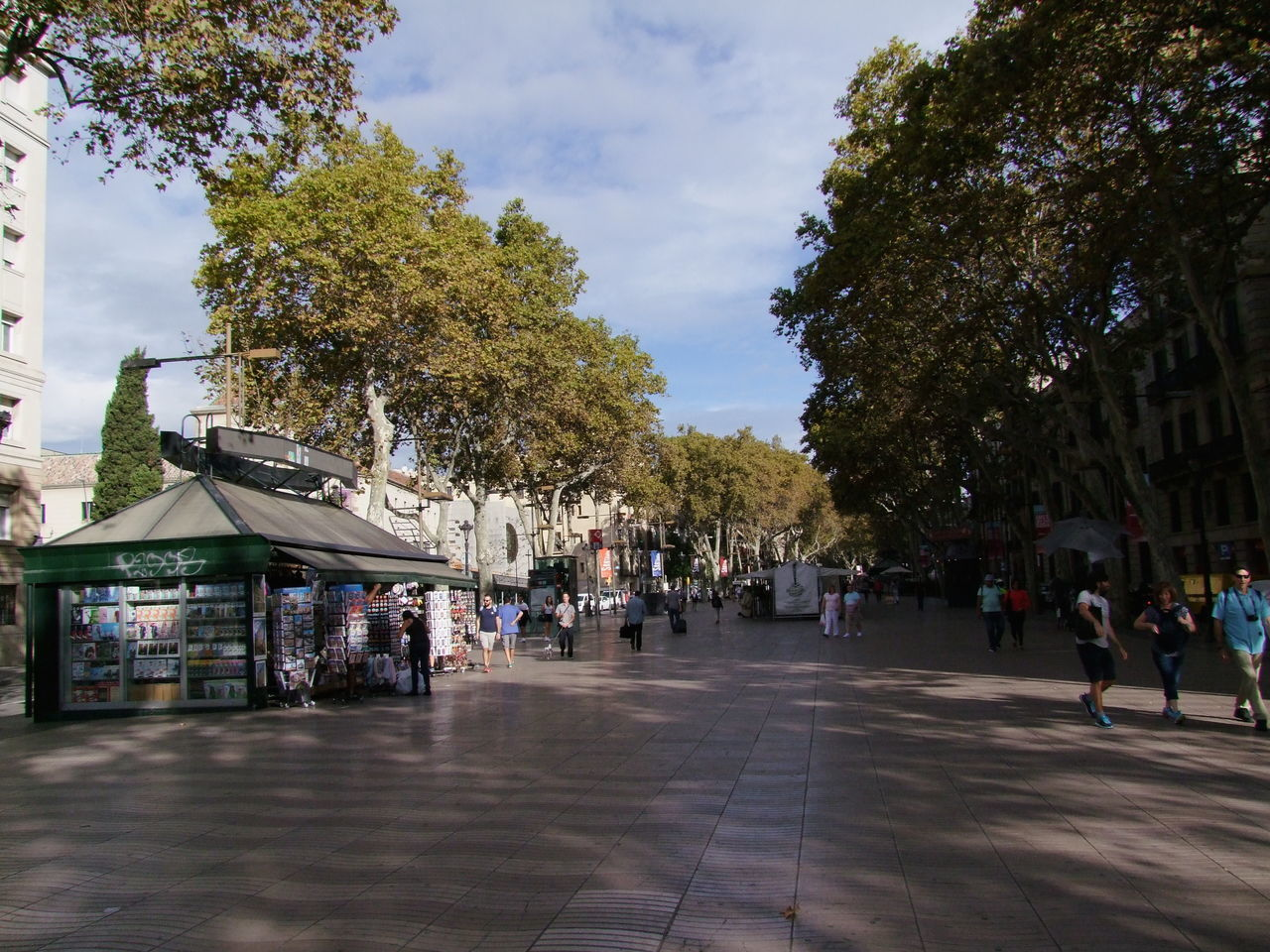 Early Morning on Rambla Avenue Barcelona Blue Sky White Clouds Buildings City Composition Diminishing Perspective Full Frame Incidental People Leisure Activity Outdoor Photography Ramblas Spaın Street Sunlight And Shadows Tourism Tourist Attraction  Tourist Destination Tree Walkway