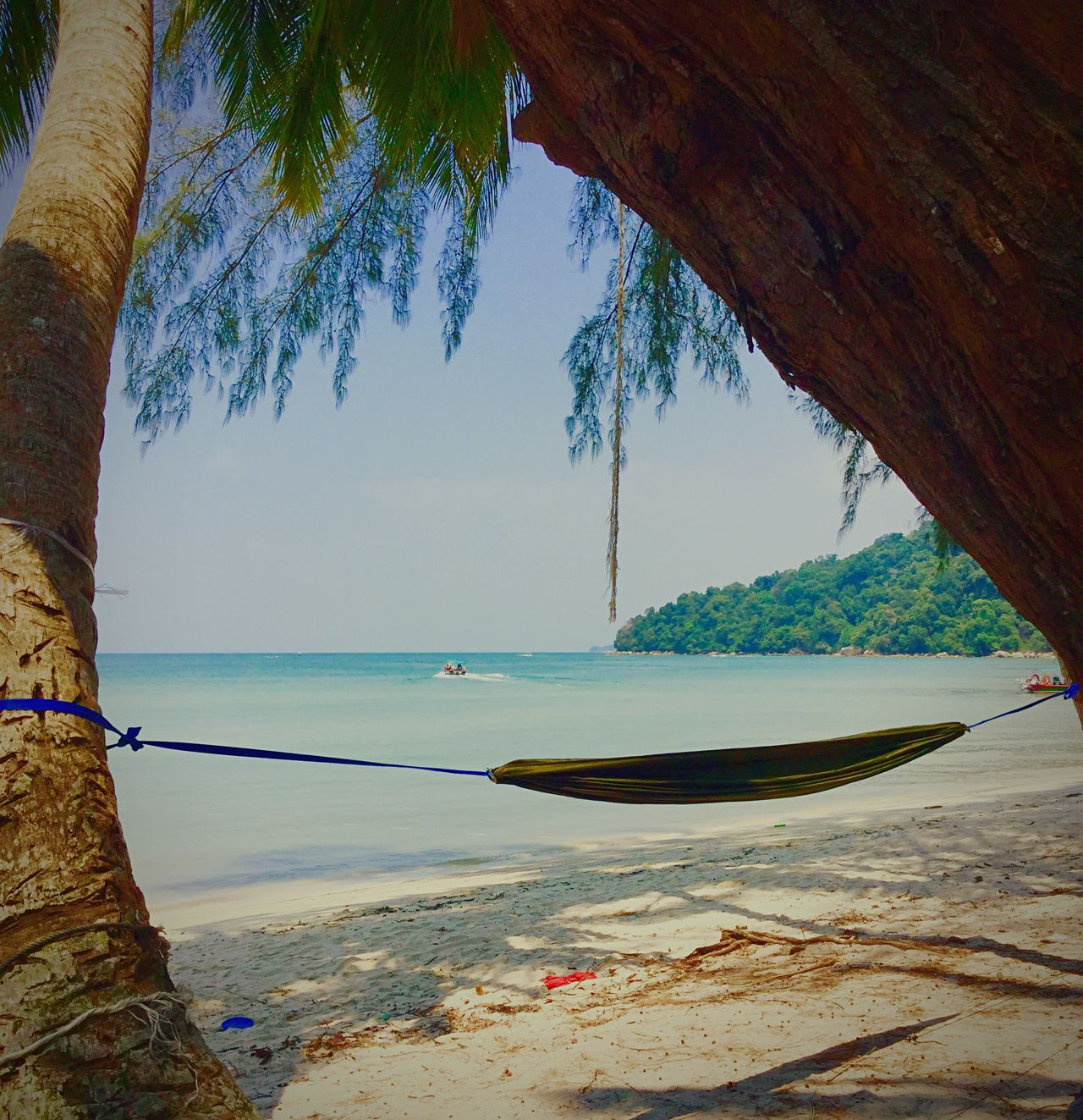 The Great Outdoors Nature Monkey Beach Beach Jungle Beach Paradise Jungle Penang Islandlife My Unique Style White Sand Camping Malaysia Hammock Back To Nature