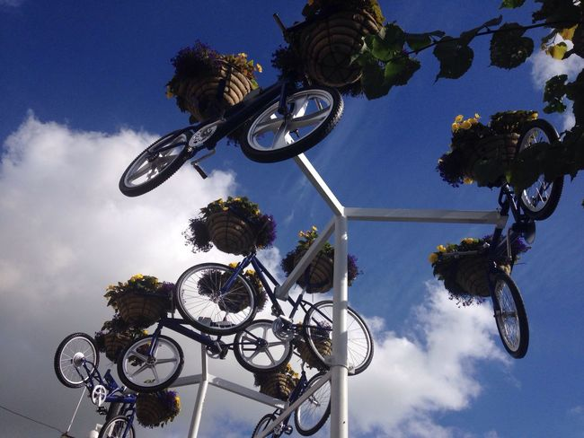 Bicycles in the air Sky_scapes EyeEm Best Shots Flower In Bloom Bicycles Blue Color