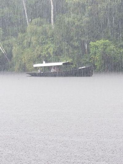 Coming in from the Rain Rain Amazon Rainforest Samurai River Pacaya-Samiria National Reserve