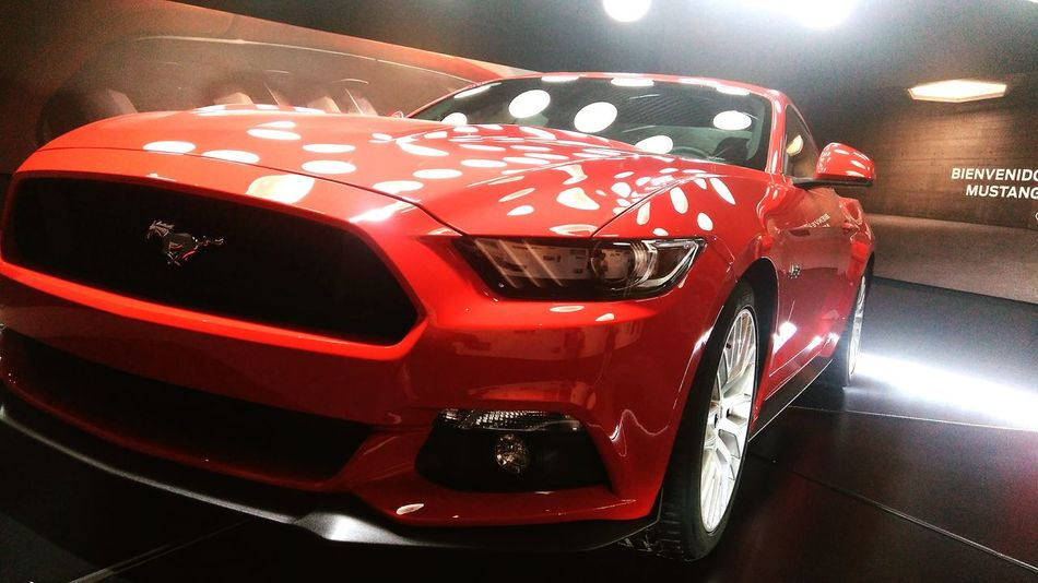Fordmustang Day Sports Track No People Racecar Performance Motorsport Auto Racing Indoors  Sports Race Sport Motorsport Auto Racing Night Red Car
