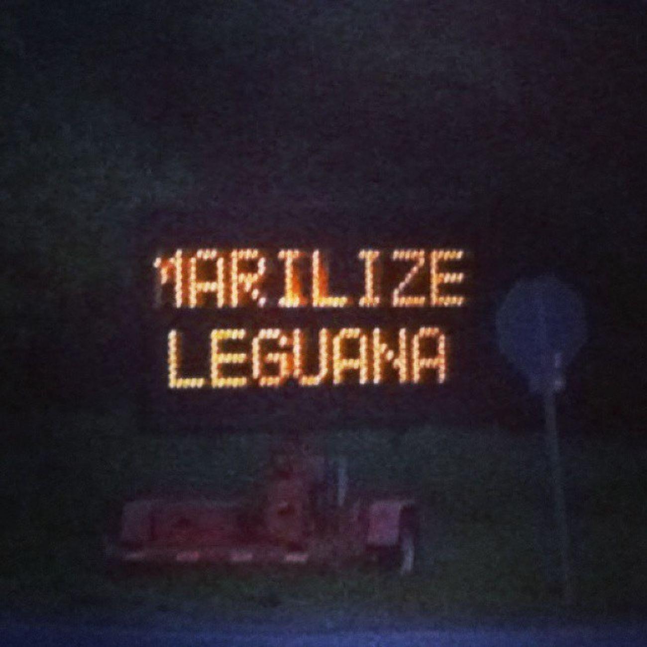 Marijuana Theywantme Marilizeleguana ☀ Afriendwithweedisafriendindeed Tumblr