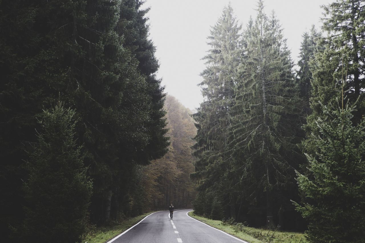 Person Walking On Road Amidst Trees Against Sky