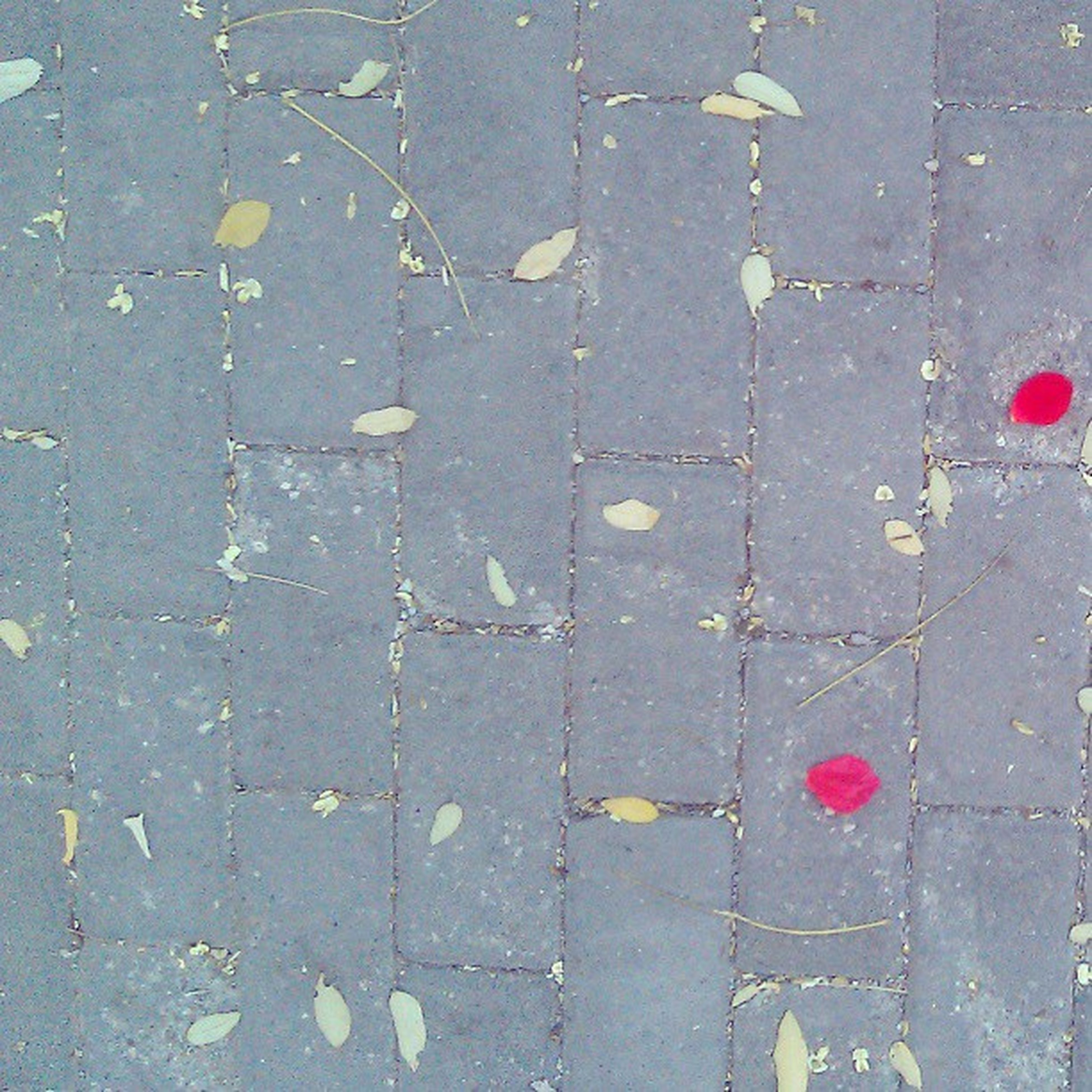 street, high angle view, asphalt, full frame, road marking, textured, road, backgrounds, pattern, red, day, outdoors, no people, sidewalk, cobblestone, close-up, transportation, paving stone, guidance, pavement