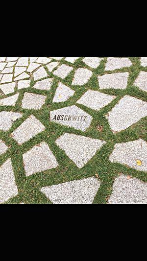 Berlin Berlin Photography Berlincity Berlin Life Berlin Tourist Tourist Tourist Attraction  German GERMANY🇩🇪DEUTSCHERLAND@ Auschwitz  Auschwitz Memorial History Paving Stone Outdoors Footpath No People Sombre