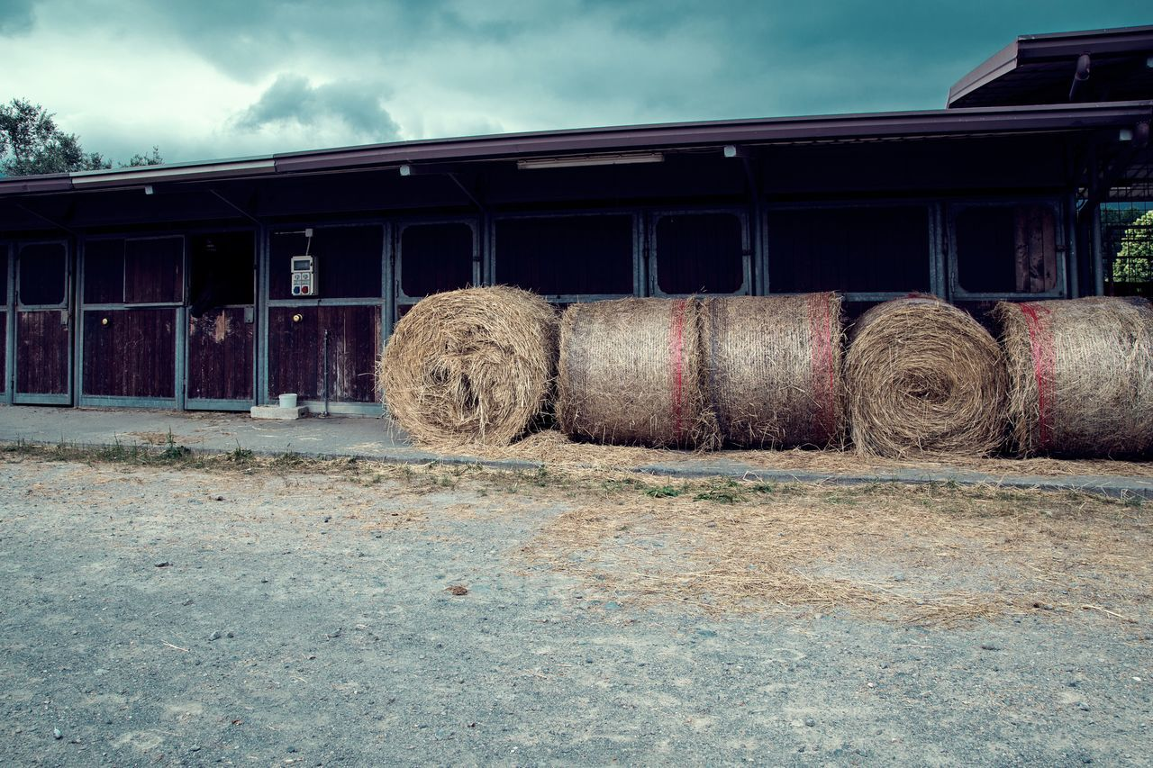bale, hay, hay bale, sky, industry, field, no people, agriculture, outdoors, day, haystack, cloud - sky, stationary, built structure, nature