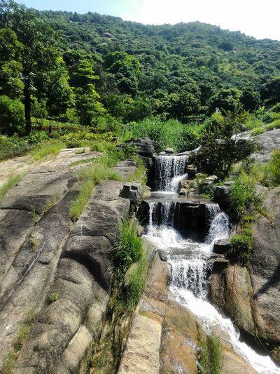 Water Motion Forest Nature Yangtaishan Shenzhen.China
