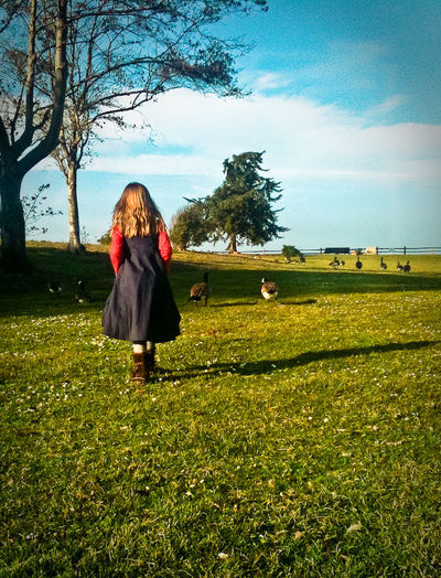 A Girl and and her Geese Telling Stories Differently Beauty In Nature Casual Clothing Child Field Full Length Geek Nature's Diversities Girl In Blue Dress Grass Grassy Green Color Landscape Leisure Activity Lifestyles Nature Pompom PomPomCl Rear View Scenics Sky Standing Tranquil Scene Tranquility Tree