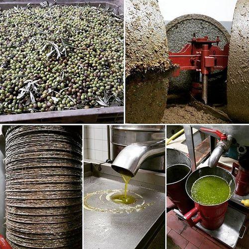 """Traditional oilmill, through """"cold process"""" with millstones, to obtain extra virgin oilve oil..the true one!!! It's a shame don't smell the scents.. there are no words! - tradizionale frantoio con macine, attraberso il metodo a freddo, si ottiene olio di oliva extra vergine .. ma quello vero!!!! 😉Oilmill Frantoio Oilmillwithmillstones Frantoiotradizionale Frantoiotradizionalediscontinuo Extravirginoliveoil Traditionaloilmill Millstone Millstones Organicextravirginoliveoil Organicoliveoil Olioextraverginedolivabiologico Italy Puglia Volgofoggia Volgopuglia Thisispuglia Loves_united_puglia Love_puglia Loves_puglia Igpuglia Volgoitalia Igersitalia Igersfoggia Verso_sud verso_sud_natura bestpugliapics top_pugliaphoto official_italian_food"""