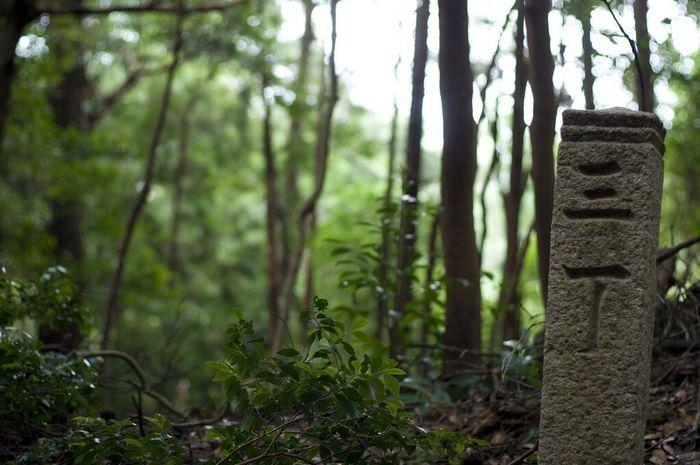 四国八十八カ所遍路道。室町時代に置かれた丁石。寺まであと3丁(1丁は約109m) 徳島県