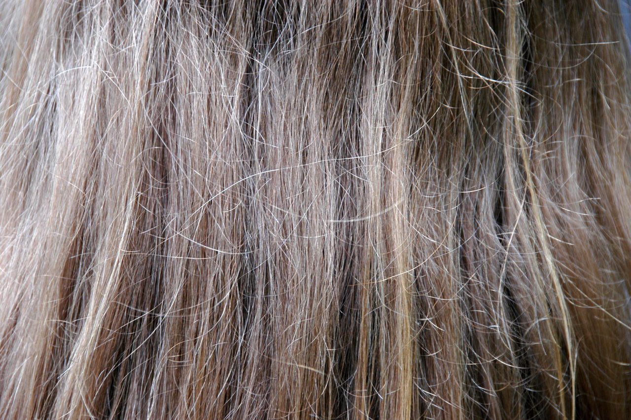 Beautiful stock photos of hair, Backgrounds, Beauty, Blonde Hair, Elegance