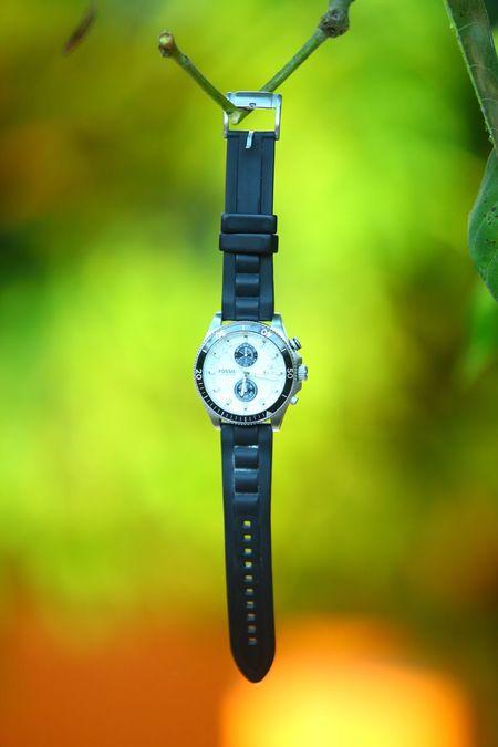 Fossil Watches Watchlover Watchcollection Naturebackground Naturelove Thekkady Greenery Greenkerala MyPhotography