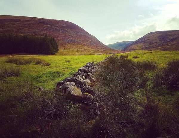 Love this place 🌲⛰ Landscape Nature Mountain Outdoors Scenics Cloud - Sky Beauty In Nature Grass EyeEm Best Shots - Nature Mountain Range Scotland Wild Landscape EyeEm Best Shots Scotlandpassion Eye4photography  Scotlandlover EyeEm Nature Lover Beauty In Nature Lochmuick Cairngorms Cairngorms National Park