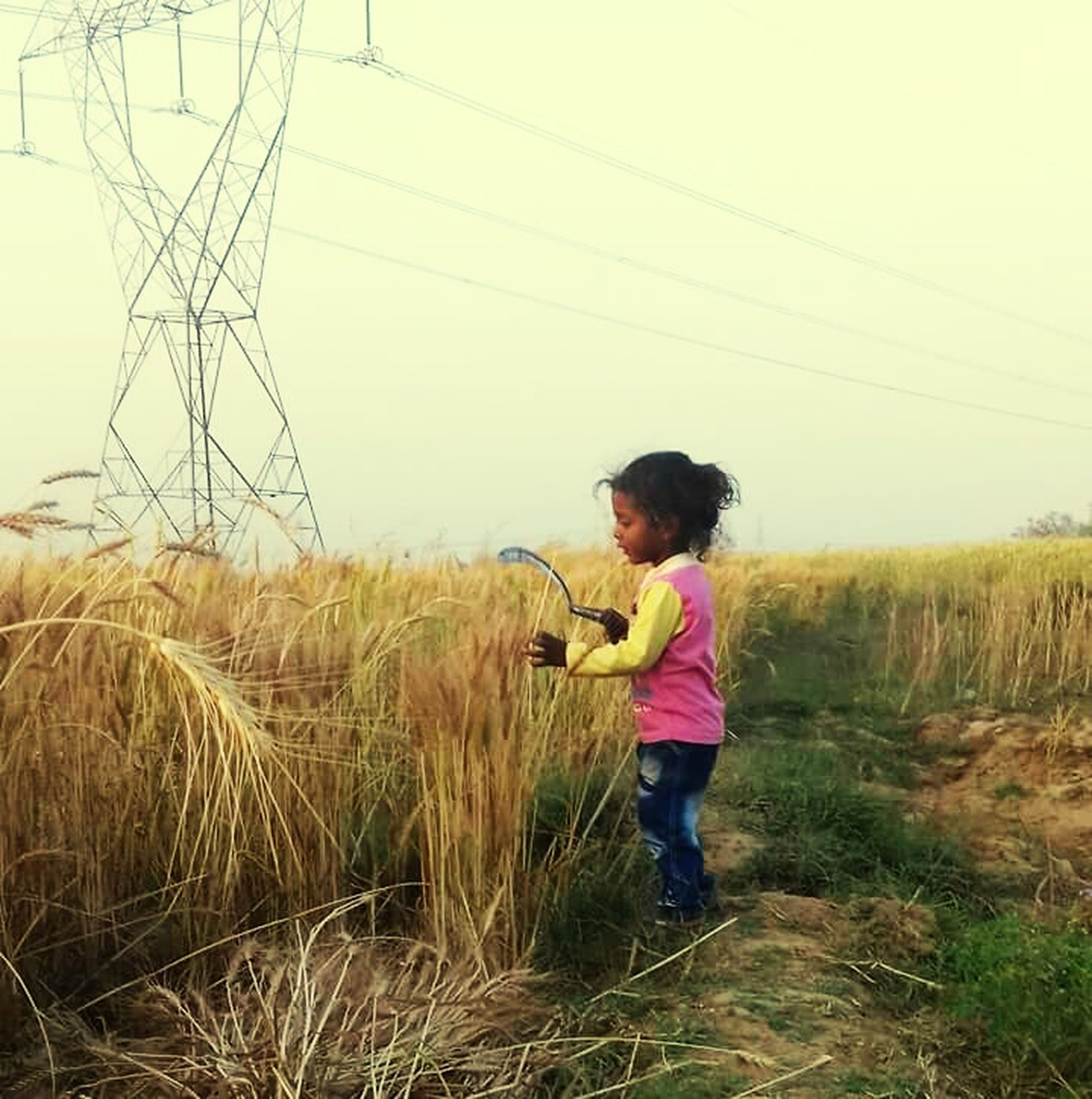 grass, child, childhood, children only, field, nature, full length, outdoors, people, one person, wheat, sky, day