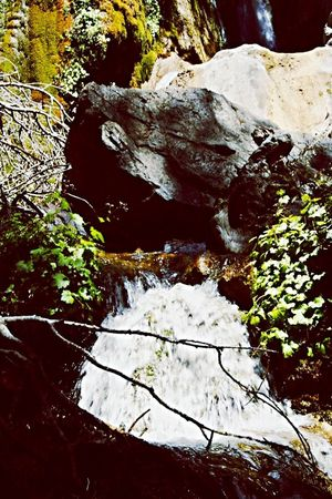The Ruffians Crew take over Nature in Big Sur CALIFORNIA photo by, Miss Six Colour Of Life