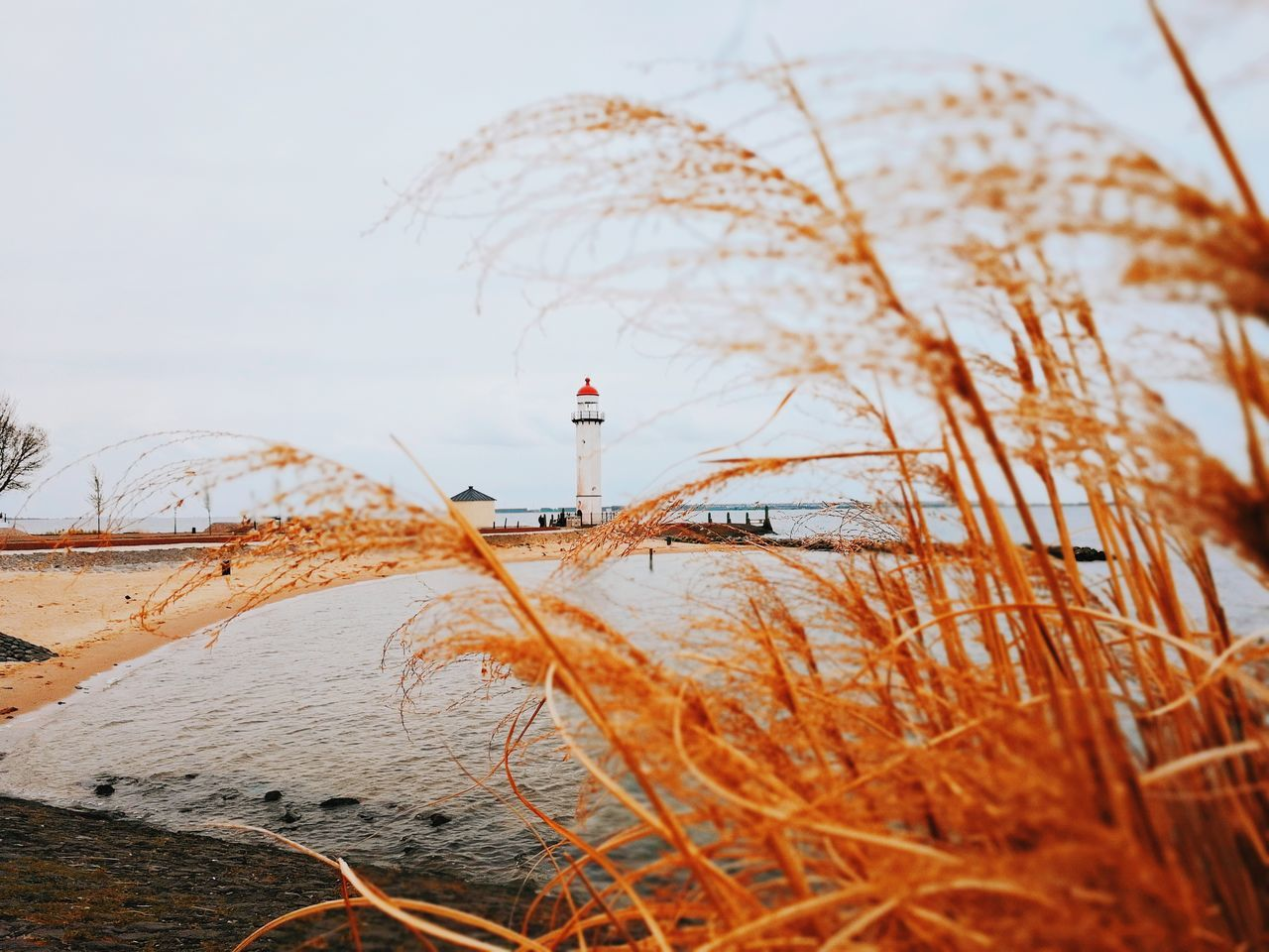 guidance, lighthouse, safety, direction, nature, protection, water, tranquility, day, no people, beauty in nature, outdoors, scenics, grass, winter, sky